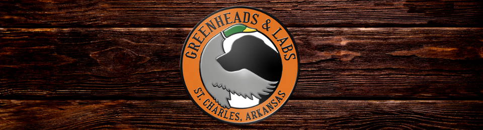 Greenheads and Labs